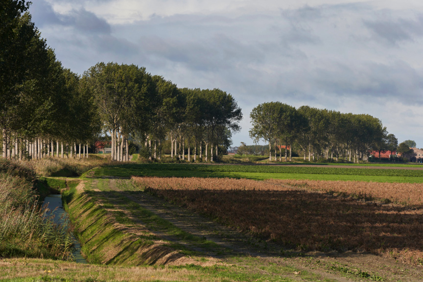 de Oude Dee - Landschap